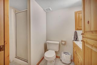 Photo 18: 14 Westpoint Drive: Didsbury Detached for sale : MLS®# A1041477