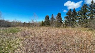 Photo 5: Lot Crisp Road in South Williamston: 400-Annapolis County Vacant Land for sale (Annapolis Valley)  : MLS®# 202115469