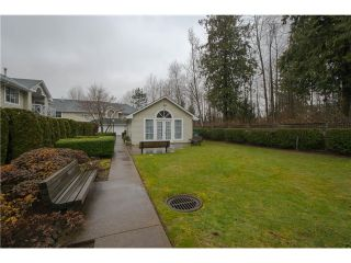 """Photo 20: 203 15439 100 Avenue in Surrey: Guildford Townhouse for sale in """"Plumtree Lane"""" (North Surrey)  : MLS®# F1404844"""