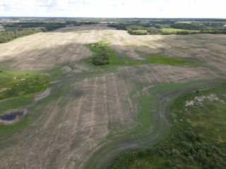 Photo 3: 51478 Rg Rd 231: Rural Strathcona County Rural Land/Vacant Lot for sale : MLS®# E4263127