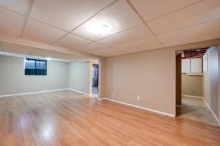 Photo 21: 10818 73 Avenue in Edmonton: Zone 15 House for sale : MLS®# E4264078