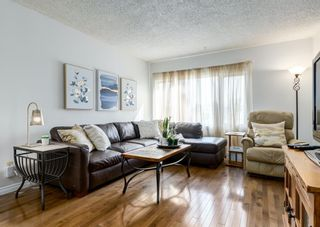 Photo 2: 387 Maitland Crescent NE in Calgary: Marlborough Park Detached for sale : MLS®# A1126572
