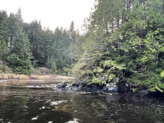 Photo 3:  in : PA Ucluelet Land for sale (Port Alberni)  : MLS®# 861692