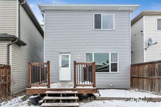 Photo 21: 168 Saddlecrest Place in Calgary: Saddle Ridge Detached for sale : MLS®# A1054855