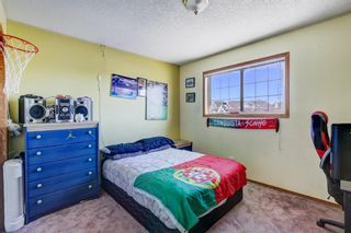 Photo 29: 216 Coral Shores Court NE in Calgary: Coral Springs Detached for sale : MLS®# A1116922