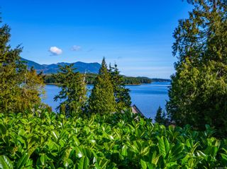Photo 54: 2345 Tofino-Ucluelet Hwy in : PA Ucluelet House for sale (Port Alberni)  : MLS®# 869723