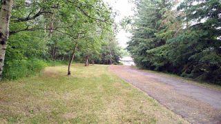 Photo 28: 51121 Range Road 270: Rural Parkland County House for sale : MLS®# E4248084