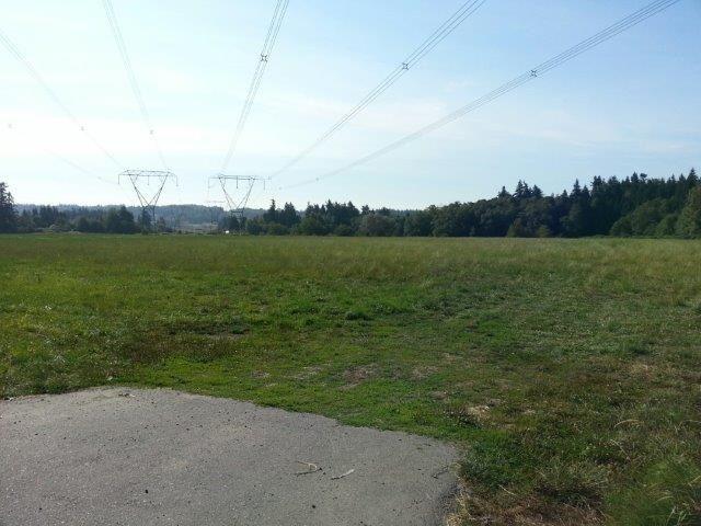 Main Photo: 17384 8 Avenue in Surrey: Pacific Douglas Land for sale (South Surrey White Rock)  : MLS®# R2025518