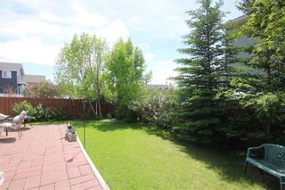 Photo 36: 215 CITADEL Drive NW in Calgary: Citadel Detached for sale : MLS®# C4303372