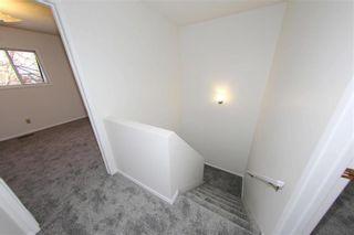 Photo 10: 928 Greencrest Avenue in Winnipeg: Fort Richmond Residential for sale (1K)  : MLS®# 202001645