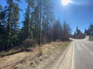 Photo 8: Lot L VIEW RIDGE ROAD in Nelson: Vacant Land for sale : MLS®# 2460797
