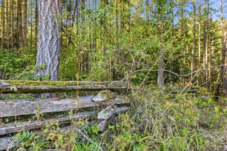Photo 28: 2521 North End Rd in : GI Salt Spring House for sale (Gulf Islands)  : MLS®# 854306