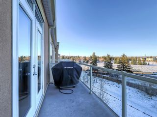 Photo 27: 404 2 HEMLOCK Crescent SW in Calgary: Spruce Cliff Apartment for sale : MLS®# A1061212