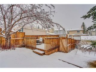 Photo 43: SOLD in 1 Day - Beautiful Strathcona Home By Steven Hill of Sotheby's International Realty