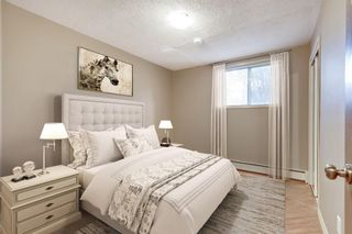 Photo 15: 2815 11 Avenue SE in Calgary: Albert Park/Radisson Heights Detached for sale : MLS®# A1149863