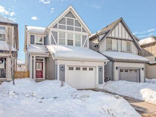 Photo 1: 141 NEW BRIGHTON Park SE in Calgary: New Brighton House for sale : MLS®# C4171872