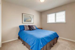 Photo 34: 13705 Mt Mckenzie Drive SE in Calgary: McKenzie Lake Detached for sale : MLS®# A1112785