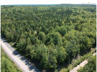 Photo 3: Lot Lake Pleasant Road in Springfield: 400-Annapolis County Vacant Land for sale (Annapolis Valley)  : MLS®# 202122591