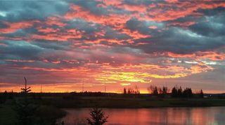 Photo 46: 90 SILVERADO SKIES Crescent SW in Calgary: Silverado Detached for sale : MLS®# A1021309