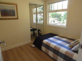 Photo 22: 2621 CEDAR Drive in Surrey: Crescent Bch Ocean Pk. House for sale (South Surrey White Rock)  : MLS®# R2549917