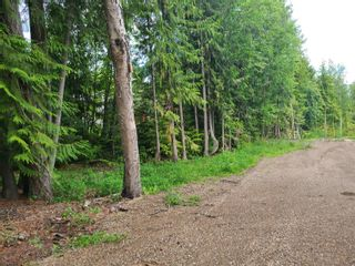 Photo 5: 1395 Taylor Road, in Sorrento: Vacant Land for sale : MLS®# 10229703