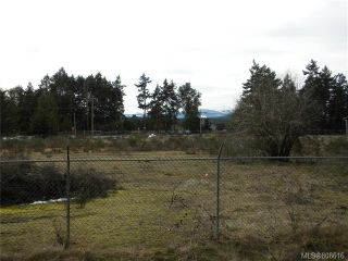 Photo 7: 1100 E Island Hwy in Parksville: PQ Parksville Mixed Use for sale (Parksville/Qualicum)  : MLS®# 808616