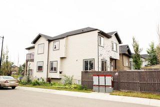 Photo 48: 57 TARALAKE Heath NE in Calgary: Taradale Detached for sale : MLS®# A1131189