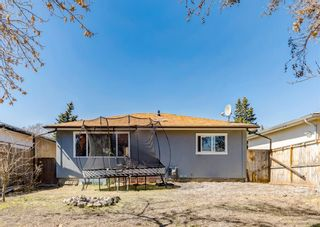 Photo 40: 3042 30A Street SE in Calgary: Dover Detached for sale : MLS®# A1097578