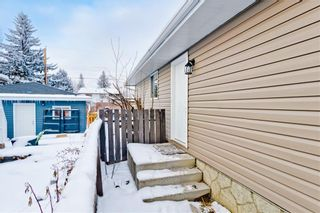 Photo 30: 100 DOVERVIEW Place SE in Calgary: Dover Detached for sale : MLS®# A1024220