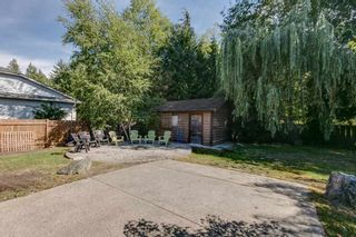 """Photo 17: 41374 DRYDEN Road in Squamish: Brackendale House for sale in """"Brackendale"""" : MLS®# R2198766"""
