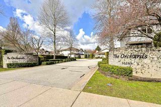 """Photo 40: 124 16233 82ND Avenue in Surrey: Fleetwood Tynehead Townhouse for sale in """"THE ORCHARDS"""" : MLS®# R2583227"""