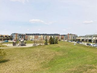 Photo 20: 2105 279 COPPERPOND Common SE in Calgary: Copperfield Apartment for sale : MLS®# C4296739