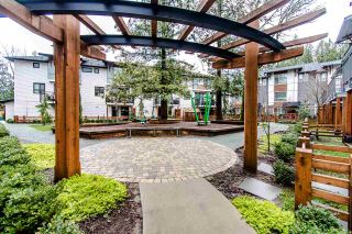 """Photo 19: 47 8508 204 Street in Langley: Willoughby Heights Townhouse for sale in """"Zetter Place"""" : MLS®# R2426309"""