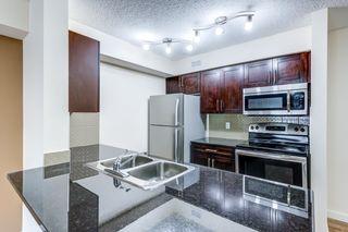 Photo 9: 204 5816 MULLEN Place in Edmonton: Zone 14 Condo for sale : MLS®# E4262303