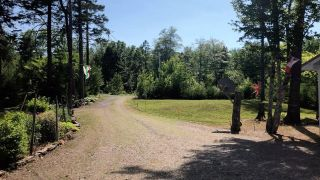 Photo 27: 519 Kill Dog Cove Road in Parkdale: 405-Lunenburg County Residential for sale (South Shore)  : MLS®# 202111106