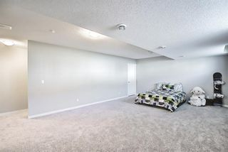Photo 26: 458 Nolan Hill Drive NW in Calgary: Nolan Hill Row/Townhouse for sale : MLS®# A1125269