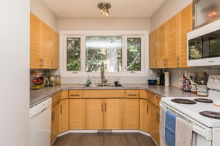 Photo 16: 9321 95 Street in Edmonton: Zone 18 House for sale : MLS®# E4251787