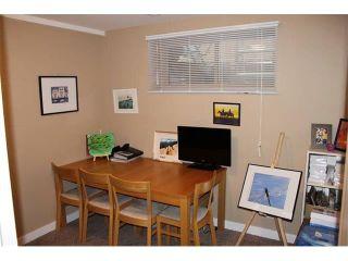 Photo 36: 202 ELGIN Rise SE in Calgary: McKenzie Towne House for sale : MLS®# C4049273