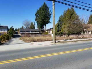 Photo 6: 12135 203 Street in Maple Ridge: Northwest Maple Ridge Land for sale : MLS®# R2350746