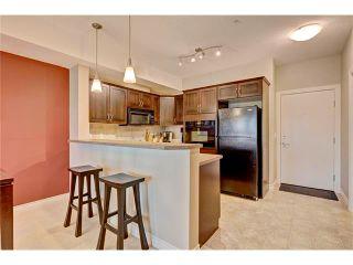 Photo 3: 208 60 ROYAL OAK Plaza NW in Calgary: Royal Oak Condo for sale : MLS®# C4033173