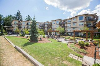 """Photo 14: 424 2565 CAMPBELL Avenue in Abbotsford: Central Abbotsford Condo for sale in """"ABACUS UPTOWN"""" : MLS®# R2381899"""