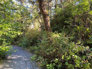 Photo 8: 851 Lorne White Pl in : PA Ucluelet Land for sale (Port Alberni)  : MLS®# 878308