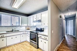 Photo 17: 1137 Berkley Drive NW in Calgary: Beddington Heights Semi Detached for sale : MLS®# A1136717