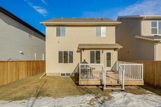 Photo 43: 69 SILVERADO Boulevard SW in Calgary: Silverado Detached for sale : MLS®# A1072031