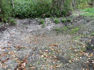 Photo 18: 292 Terry Road, in Enderby: Vacant Land for sale : MLS®# 10239679