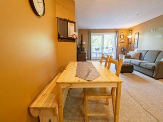Photo 15: 101 4903 47 Avenue: Stony Plain Condo for sale : MLS®# E4247638