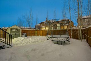 Photo 4: 35 CRANARCH LD SE in Calgary: Cranston House for sale : MLS®# C4227148