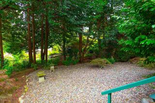 """Photo 24: 1820 FULTON Avenue in West Vancouver: Ambleside House for sale in """"Ambleside"""" : MLS®# R2577844"""