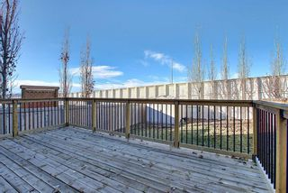 Photo 32: 167 Covemeadow Crescent NE in Calgary: Coventry Hills Detached for sale : MLS®# A1045782