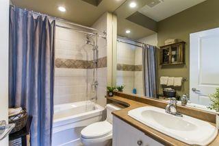 Photo 17: 11008 237B Street in Maple Ridge: Cottonwood MR House for sale : MLS®# R2407120